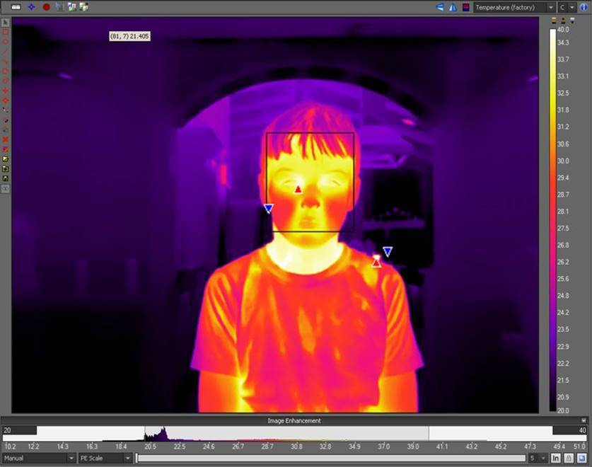 Thermal security cameras for public health regulations